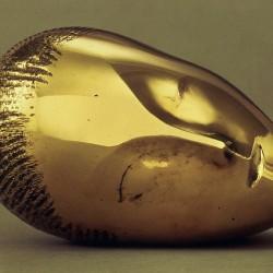 La Muse endormie - Constantin Brancusi (1910)