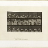 Animation d'un enfant - Eadweard J. Muybridge