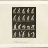 La femme drapée - Eadweard J. Muybridge