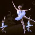 Ballet Casse-noisette: Google souligne les 120 ans du ballet Casse-noisette