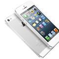 iPhone 5: pas de surprise pour les fans d'Apple