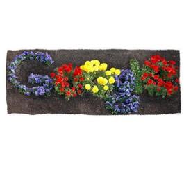 Journée de la Terre: un doodle de Google pour la souligner