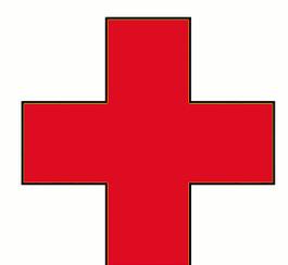 Donnez à la croix rouge du Japon via votre compte Adsense
