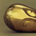 Brancusi: ses oeuvres soulignées par Google