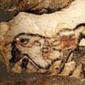 Grotte de Lascaux: 70ème anniversaire de découverte