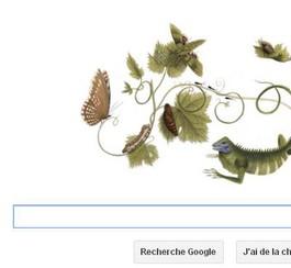 Google doodle pour le 366ème anniversaire de Maria Sibylla Merian