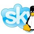 Skype 5.3 pour Windows et Linux